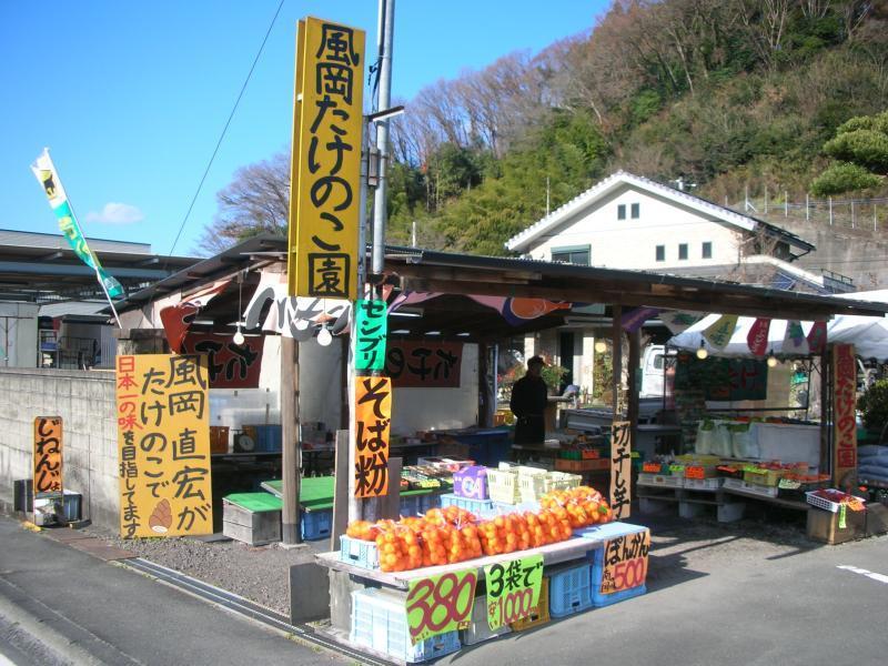 タケノコ 王 場所
